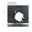 The Principle Of Moments/Robert Plant