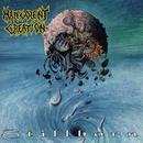 Stillborn/Malevolent Creation