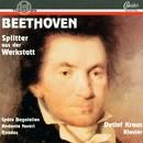 Ludwig van Beethoven: Splitter aus der Werkstatt/Detlef Kraus