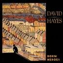 Born Heroes/David Hayes
