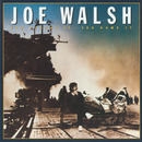 You Bought It - You Name It/Joe Walsh