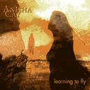 Learning To Fly/Anisha Cay