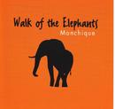 Monchique/Walk Of The Elephants