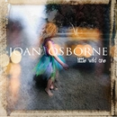 Little Wild One/Joan Osborne