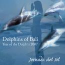 Dolphins Of Bali 2007/Jornada del Sol