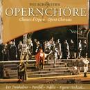 Die Schönsten Opernchöre Vol. 4/Chor der Staatsoper Wien, Orchester der Volksoper Wien, Franz Bauer-Theussl