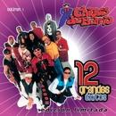 12 Grandes exitos  Vol. 1/Chicos de Barrio