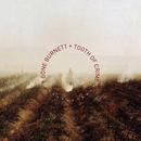 Tooth of Crime/T-Bone Burnett