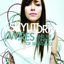 Wires...And The Concept Of Breathing/A Skylit Drive