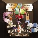 Flesh And Bones Electric Fun (DMD Album)/Mutemath