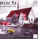 Bach: Kantaten BWV 36b, 134a/Leipziger Universitätschor, Pauliner Barockensemble, Linda Perillo, Matthias Koch, Nils Giesecke, Wolfgang Unger