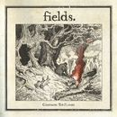 Charming The Flames [Acoustic Version]/Fields