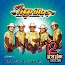 12 Grandes exitos Vol. 2/Los Tigrillos