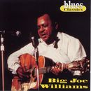 Big Joe Williams/Big Joe Williams