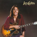 Sleepwalk/Larry Carlton