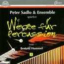 Berthold Hummel: Werke für Percussion/Peter Sadlo und Ensemble