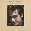 Blue Ridge Mountain Skyline/Sammy Walker