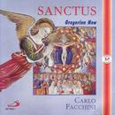 Sanctus - Gregorian Now/Coro dei Monaci Cistercensi dellAbbazia di Casamari, Carlo Facchini