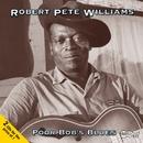 Poor Bob's Blues/Robert Pete Williams