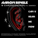 Can You Here Me Now [Feat. Jantey]/Aaron Bingle & Chriscontrol
