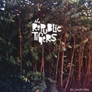 No Land's Man/The Republic Tigers