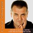 Amami in questa notte/Luigi Campese