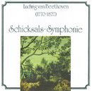 Ludwig van Beethoven - Schicksalssymphonie/Radiosymphonieorchester Ljubljana, Philharmonic Orchestra London