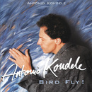 Bird Fly/Antonio Koudele