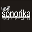 Running Up That Hill/Sonorika