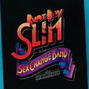 Root Boy Slim & The Sex Change Band/Root Boy Slim & The Sex Change Band