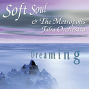 Dreaming/Soft Soul & The Metropolis Filmorchestra