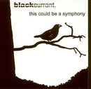 This Could Be A Symphony/Black Currant