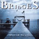 Bridges/David Scott