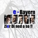 Zier Di ned a so!!/e-Bayern