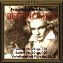 Ludwig van Beethoven: Friedrich Hoericke spielt Beethoven/Friedrich Hoericke