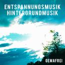 Entspannungsmusik - Hintergrundmusik - gemafrei/Entspannungsmusik Hintergrundmusik Projekt