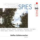Hommage à Walter Spies/Steffen Schleiermacher