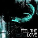 Feel the Love/Can You Feel It Too