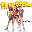 Cameltoe/Fannypack
