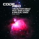 Galaxy (feat. Sheila Ford & Biblical Jones)/The Muthafunkaz