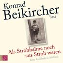 Als Strohhalme noch aus Stroh waren/Konrad Beikircher
