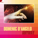Anyway/Domenic d'Angelo