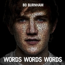 Words Words Words/Bo Burnham