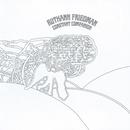 Constant Companion/Ruthann Friedman