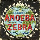 Amoeba To Zebra/Being 747