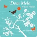 Wüster Flüster e.p./Dom Melo