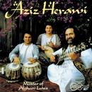 Master of Afghani Lutes/Aziz Herawi