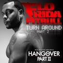 Turn Around (Part 2)/Flo Rida and Pitbull
