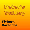 Flying To Barbados/Peter's Gallery
