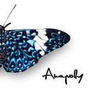 Butterfly/Anapolly